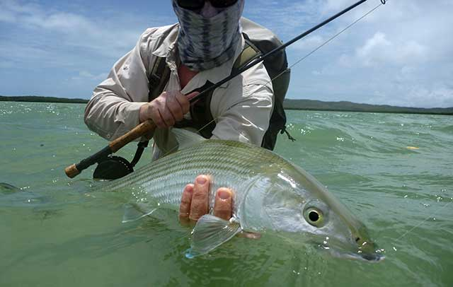 Bonefish New Caledonia